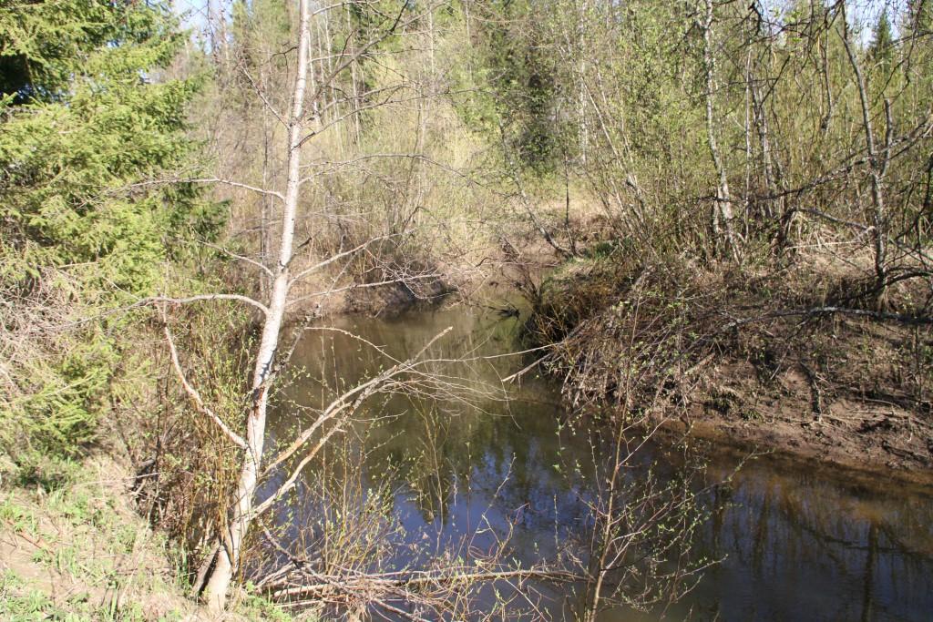 Kulöm-ju (Surnud jõgi, mis peaaegu ei voola), komi küttide kalastuspaik. Foto: Art Leete 2012
